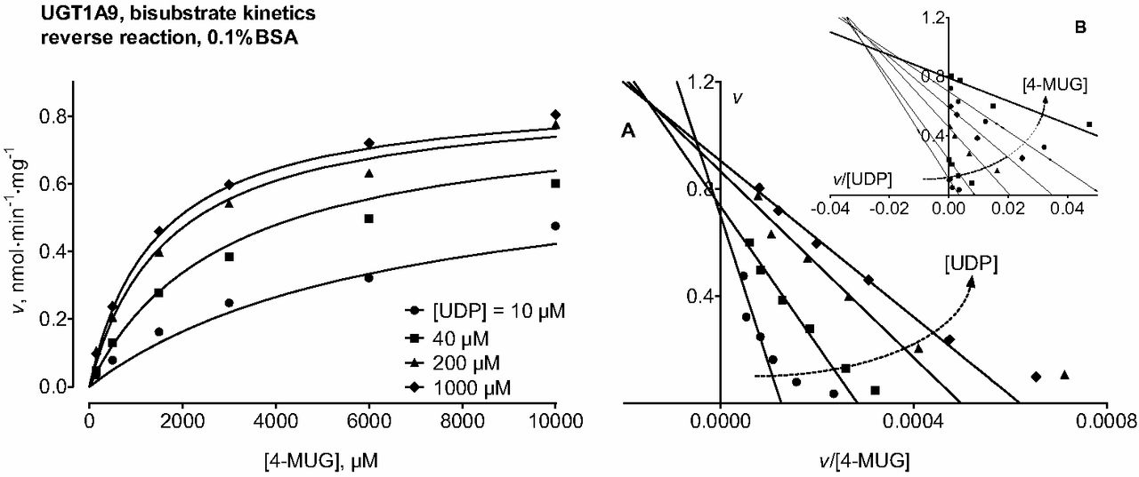 UDP-Glucuronic Acid Binds First and the Aglycone Substrate