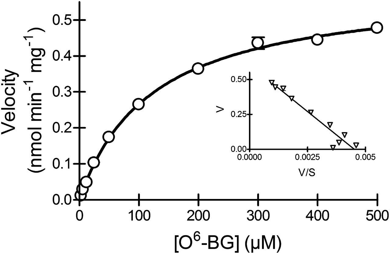 Inhibition of Human Aldehyde Oxidase Activity by Diet