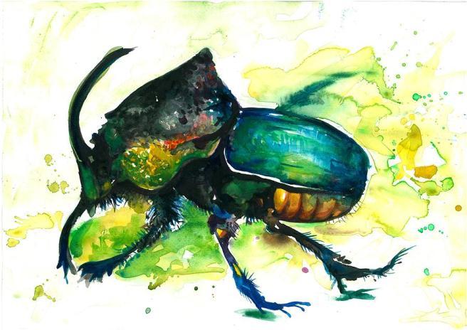 agony-beetle-tiberiu-soos