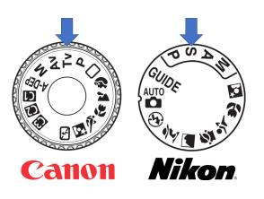 Rueda Canon Nikon