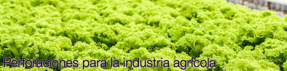 Perforaciones para la industria agrícola