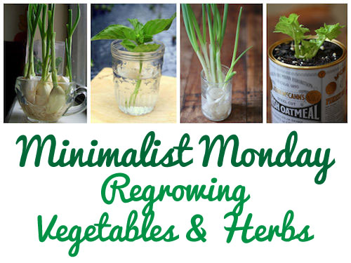 Minimalist Monday Gardening How To Regrow Vegetables He