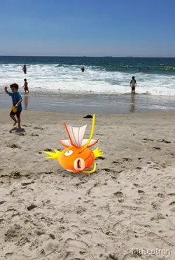 Pokemon Go fish at the beach