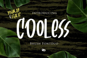 Cooless - Brush Font Duo