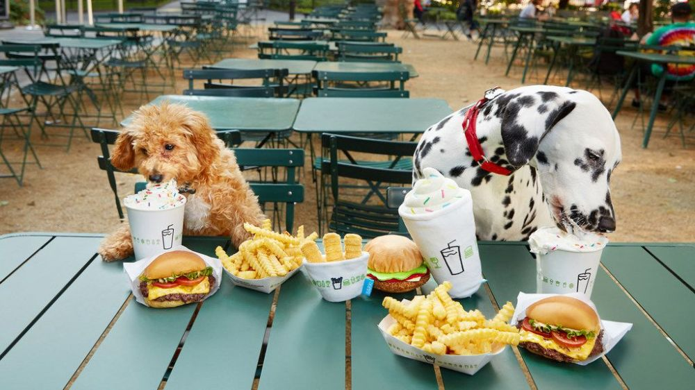 All of Shake Shack's patios are dog-friendly.