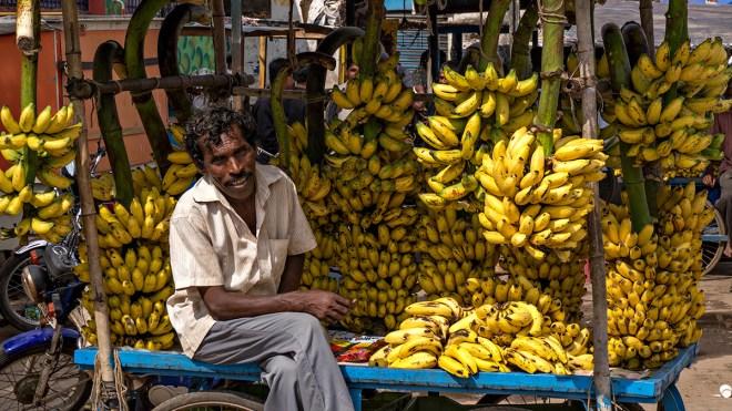 Banana seller, Ongole, Andhra Pradesh