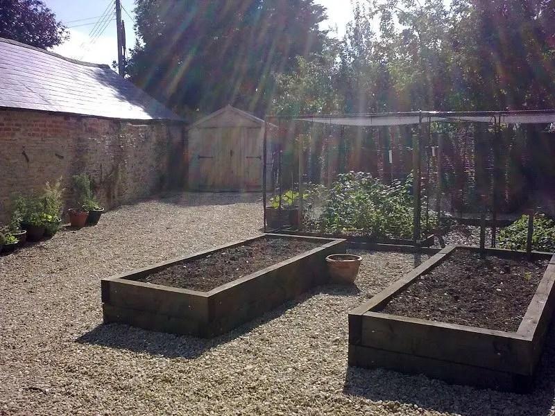 DMW Landscapes Vegetable Garden 2 1
