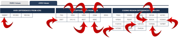 ftdna J1c2f mutations