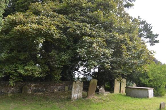 st nicholas ringwould churchyard6