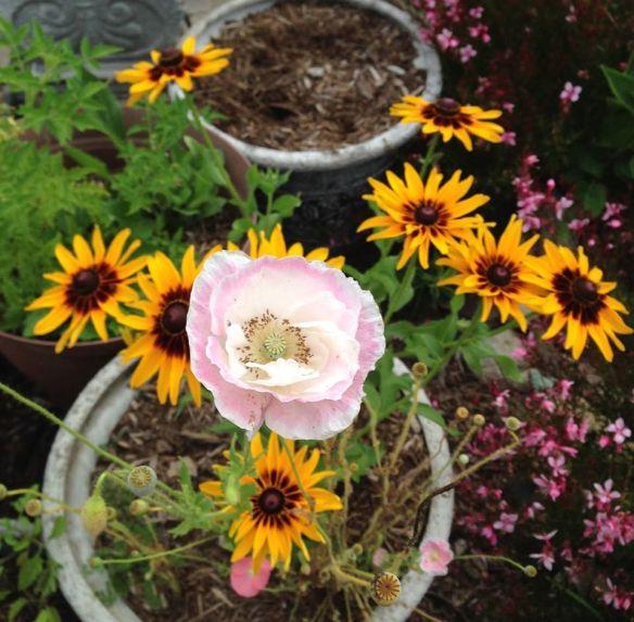 john flowers