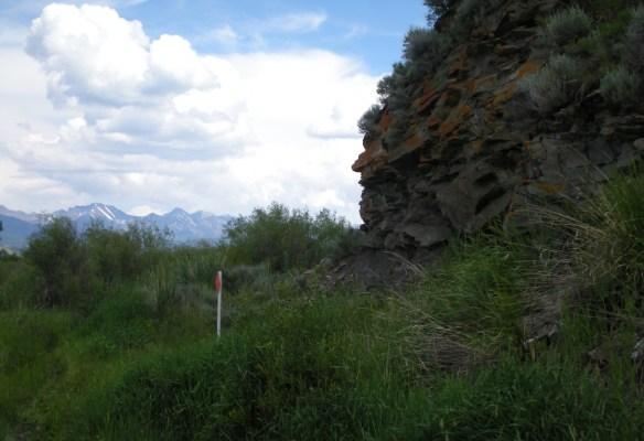 anzick burial location