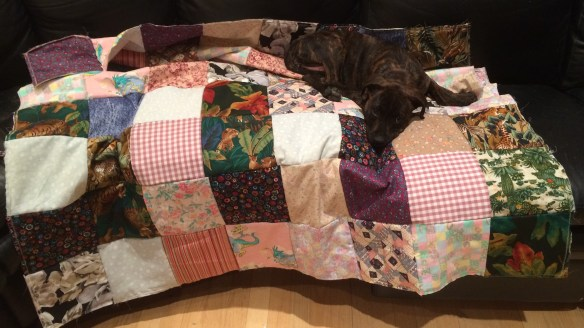 Ellie and quilt