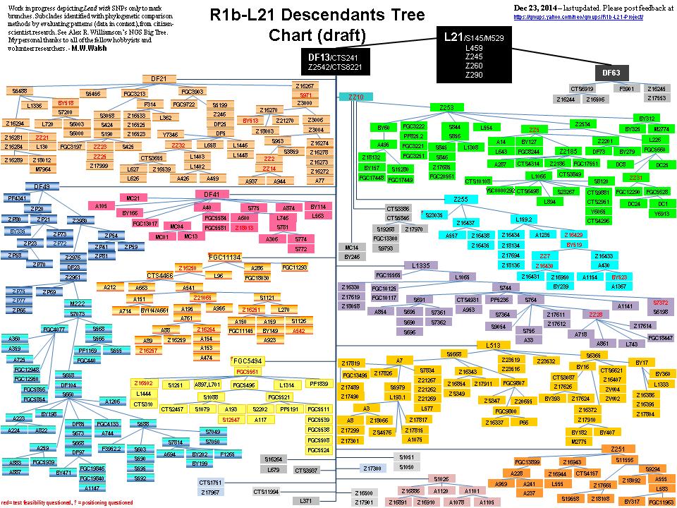 Data Bases | DNAeXplained – Genetic Genealogy