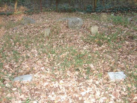 Venable cemetery new Estes stones