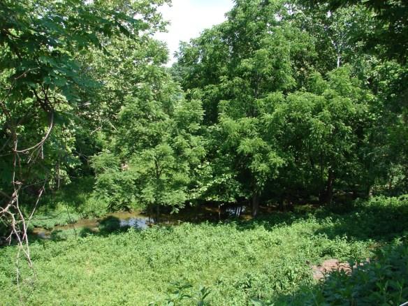 Carter's Station Lick Creek2