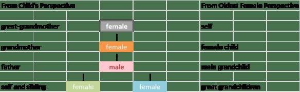 4 gen pedigree