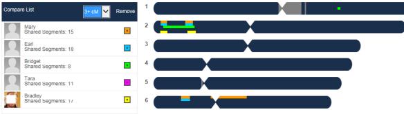 confidence chromosome browser