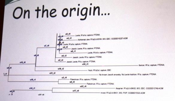 2015 ftdna behar origins