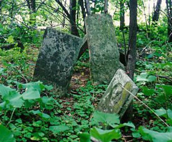 David Miller stone