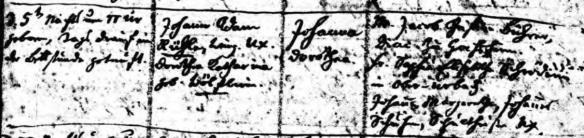 Fredericka Johanna Dorothea Reuhl