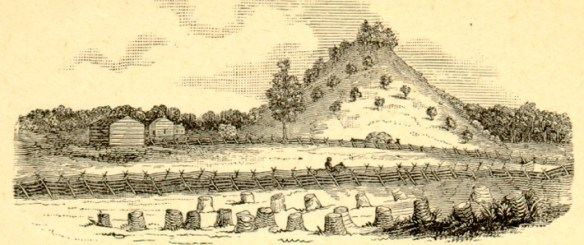 Catharina Schaeffer mound drawing