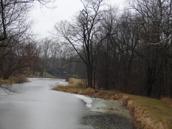 David Miller river from park