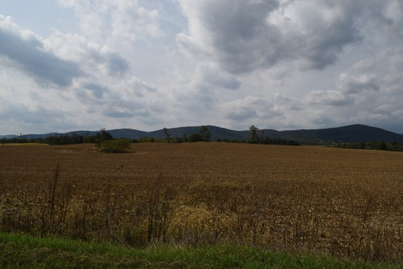 Stephen Ulrich land Frederick County
