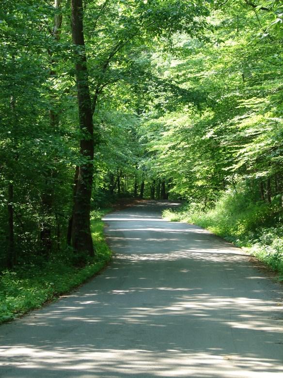 tipprell-road
