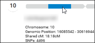 DNA astray chromosome 10.png