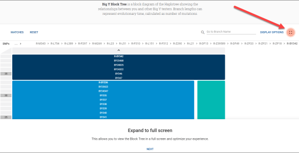 block tree tutorial 1.png