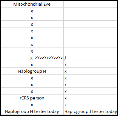 Mitochondrial Eve to H and J.png
