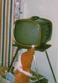 Apollo 1969 TV.jpg