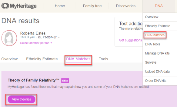 MyHeritage example theory.png