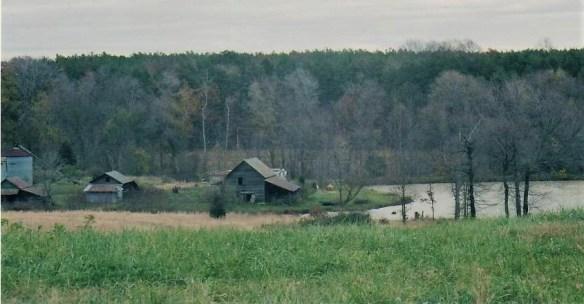 William Moore Birches Creek