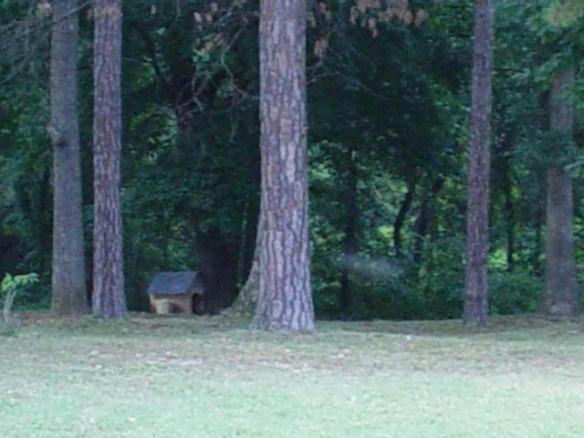William Moore Polecat Creek source.jpg