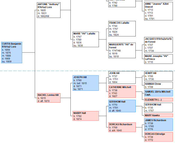 23andMe X pedigree.png