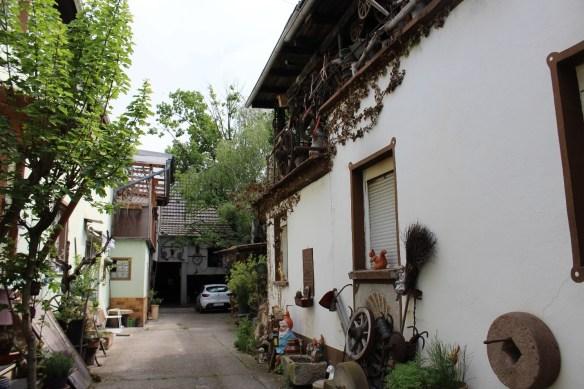 Fussgoenheim Kirsch garden 2.jpg