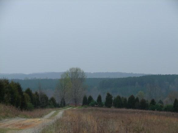 James Moore Blue Ridge.jpg