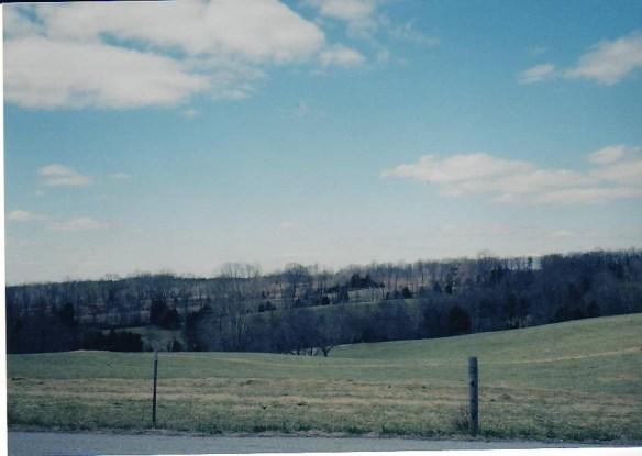Mary Rice fields