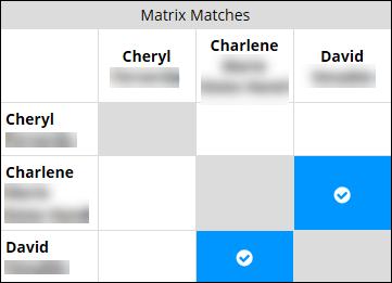 FTDNA triang matrix match.png
