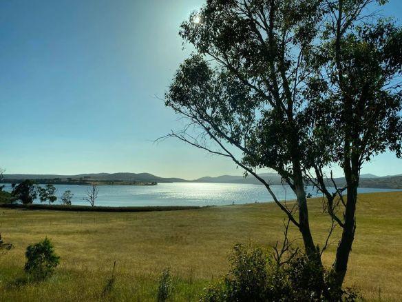 Tasmanian sun.jpg