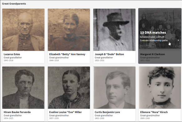 Ancestry Thrulines profiles.png