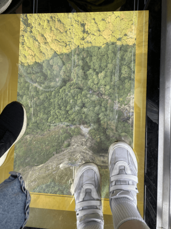 Australia Blue Mountain glass floor.png