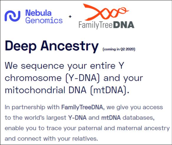 Nebula FTDNA.png