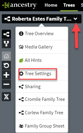 Download Ancestry tree settings.png