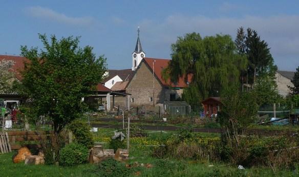 Kirsch Fussgoenheim farm