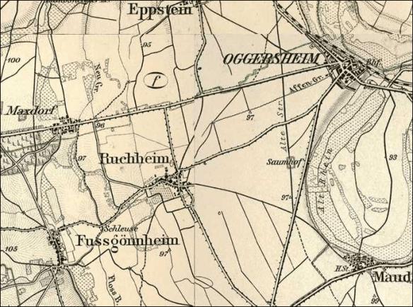Kirsch atlas Fussgoenheim