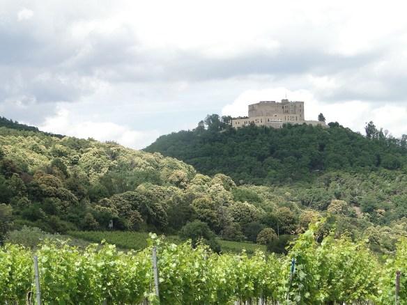 30 Hambach castle.jpg
