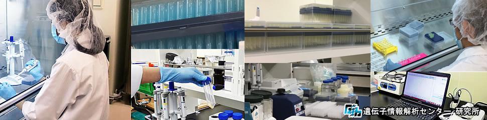 DNA鑑定 研究所