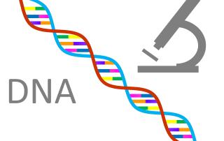 Le séquençage de l'ADN.
